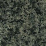 G779/Granite Tile & Slabs