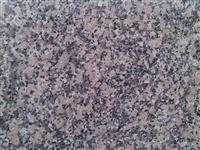 Crema Julia Granite Tile