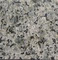 Blue Leopard Granite Tile