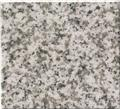 G655 Light Gray Granite