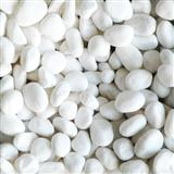 White Pebble Stone White Sand Gravel