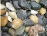 Mixed decorative natural pebble stone