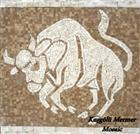 Travertine Art Mosaic K33