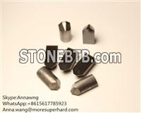 PCD Boring Tools For Carbide Rollers