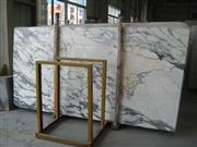 Calcatta Gold Marble