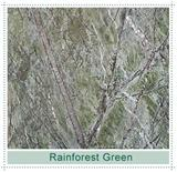 Rainforest Green-b