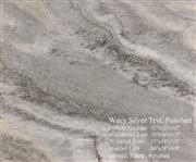 Wavy Silver Travertine