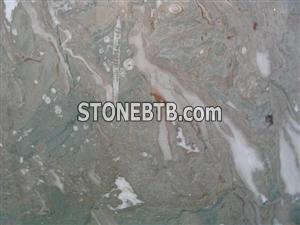 Color Coral Fossil Marble