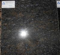 China butterfly blue granite polished tile