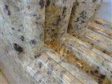 New Venetian Gold Countertops