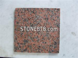 G562 Maple Red Chinese Granite Tile