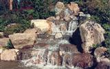 Rockery / Feature Stone