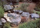 Rockery / Feature Stone Harlequin Quartzite