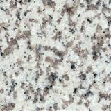 G655 TongAn White Granite