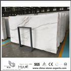 Durable New Arrival Castro White Marble for Bathroom Tiles