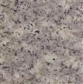 G358 Purple Red Granite Tile