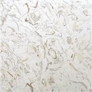 Sea Shell Limestone Tiles