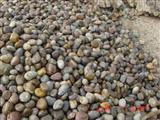 mixed river pebble