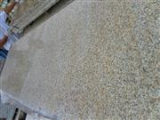 Padang Yellow Granite Big slabs G682
