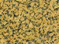 Granite Tiles/Granite Slabs G876 Giallo Sahara