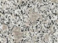 Granite Tiles/Granite Slabs G383 Bianco Sardo