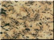 Tiger Skin Yellow Granite,Granite Tiger Skin Yellow,Tiger Skin Yellow Granite Tile