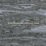 Valser Quartzite Brushed Vein Cut