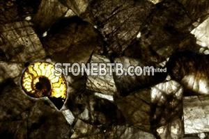 Backlit Smoky Rock Crystal Semiprecious Stone Tiles