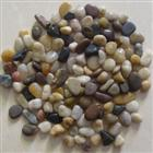 Mixed color pebble stone
