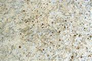 Hotsale Granite Countertp Venetian Gold