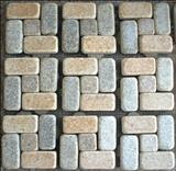 Paving Stone With Meshwork