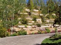 Landscaping 11