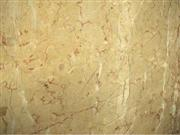 Alpinia Marble-Polished
