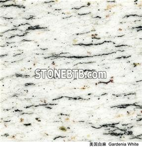 Imported Granite Gardenia White