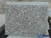 G664,Misty Brown G664 Granite