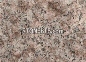 Bainbrook Peach,G687,Peach Flower,Peach Red