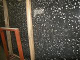 Black Fossil Marble