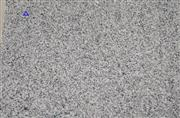 China grey granite G640 polished tile