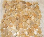 Yellow Pebble Stone Mosaic on net