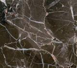 Classic Brown Marble