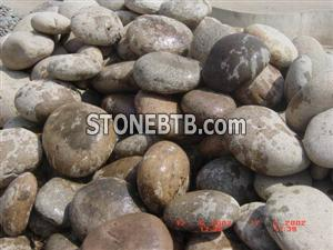 Multi Colours Pebble Stone