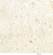 Imported Marble Golden Shell Beige