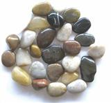 Multicolor Pebble Stone
