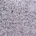 Polished Bala white granite tiles