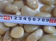 pebble stone yellow pebble stone 02