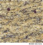 Imported Granite Giallo Cecilia