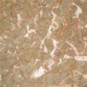 Orange Red chinese marble material