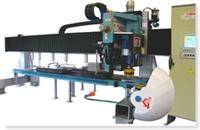 T58 : Thick Edges Shapping and Polishing Machine