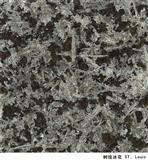 Imported Granite ST. Louis
