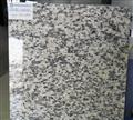 Tiger Skin White Granite Tile